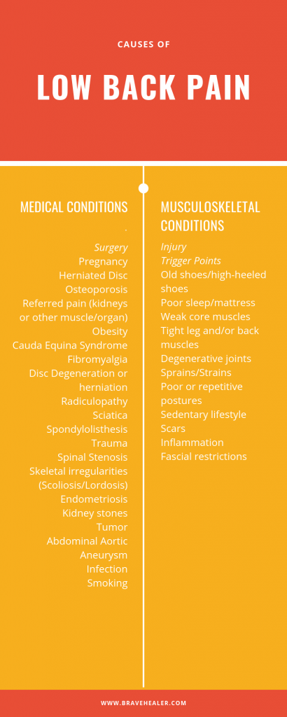 Infographic about the kinds of lower back pain