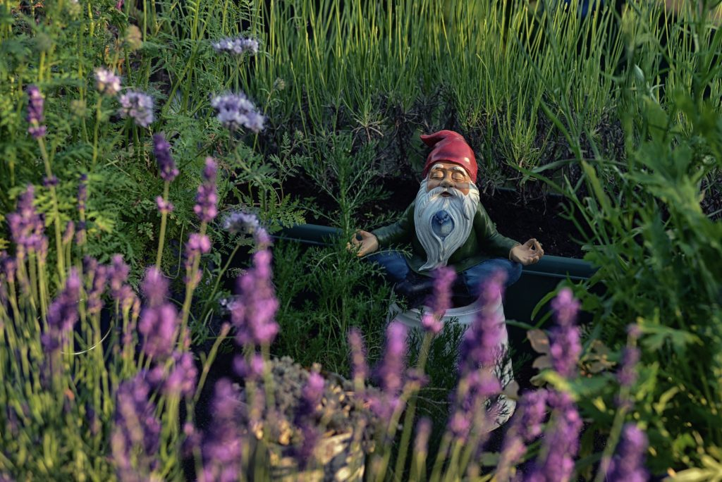 Picture of a gnome statue in a garden doing a meditation pose